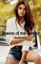Reason of my destiny by Kayla3300