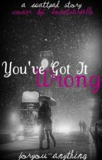 You've Got It Wrong by ForYou-Anything