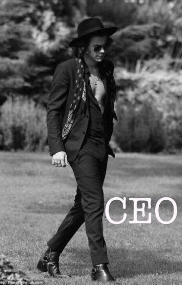 CEO \\ Harry Styles-Slow Updates