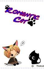Romantic Cat_AmericaxReader by pamsamya