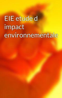 EIE etude d impact environnementale