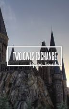 Two Owls Exchange *IN EDITING* by egg_benedict