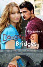Dangerous Bridges by MidnightSnow1