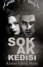 SOKAK KEDİSİ  by KerimeMuslu