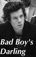 Bad Boy's Darling || H.S. by cupcakehstyles