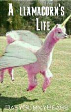 A llamacorns life by I_Love_Tony