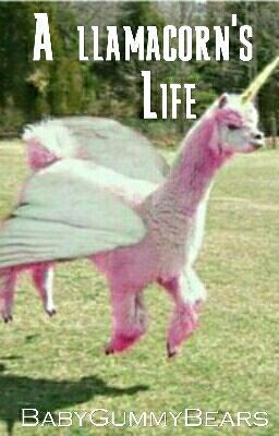 A Llamacorns Life Wattpad