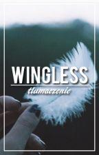 Wingless // z.m // tłumaczenie by yokita