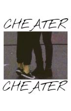 CHEATER - TEMPORARY HIATUS - by territomlinson