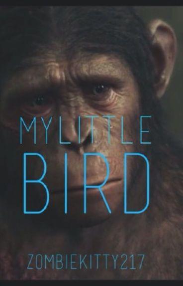 My Little Bird | Blue Eyes (Under minor grammatical editing)