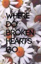 Where Do Broken Hearts Go a Louis Tomlinson fanfic by DoubleDirectioner101