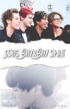 5SOS BoyxBoy Smut by BrokenSceneClifford