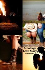 A Collage Love Story by 38LukeBryan38