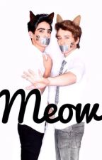 Meow. (Jos Canela <¿o alguien más?> & Tu) CD9 by LinaCatize