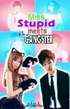 Miss Stupid Meets The Gangster by loneily