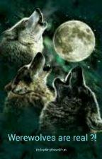 Werewolves are real?! by leadingthewolfrun