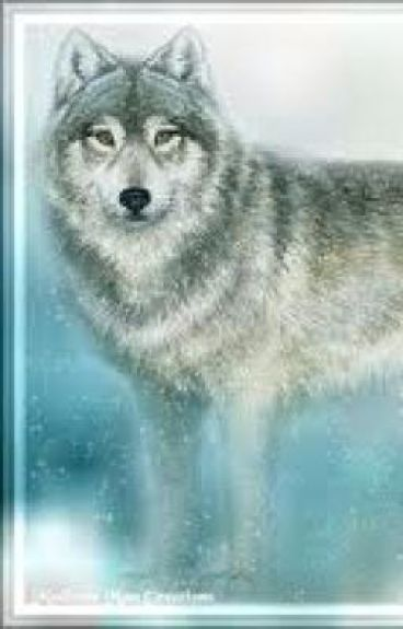 the werewolf next door 3