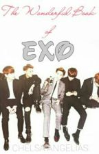 The wonderful book of EXO by KimChae
