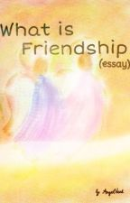 What is Friendship? (ESSAY) by AngelVerl