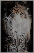 Sabre by B_Tustanowski
