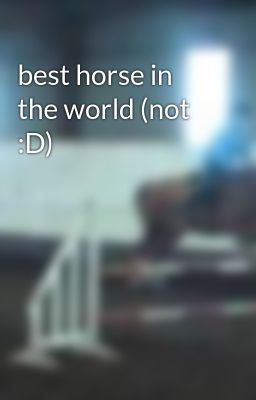 best horse in the world (not :D)