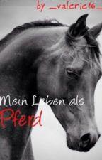 Mein Leben als Pferd by _valerie16_