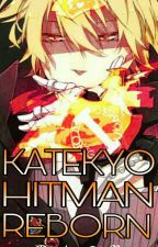 Katekyo Hitman Reborn! (Random Stuff) by doenutsx