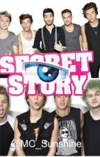 Secret Story 1D by MC_Sunshine