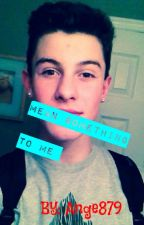 Bullied By Shawn Mendes. by ange879