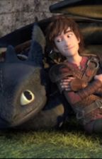 Unseen photos of httyd2 by Xycodie