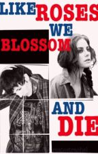 Like Roses We Blossom And Die (Oli Sykes Fanfic) by beanie146
