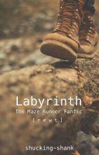 Labyrinth [ n e w t ] by shucking-shank