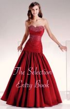 The Selection Entry Book by AverageEverydayHero