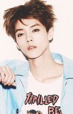 Luhan x Reader~ The Wolf Legacy by lia_chan