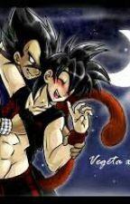 Vegeta x Goku by Ichi-Chappy-Chan