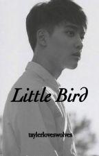 Little Bird [Kaisoo] by taylerloveswolves