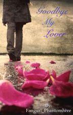 Goodbye My Lover by Shel_Kim