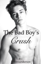 The Bad Boy's Crush by leahmsanderson