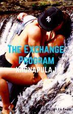 The Exchange Program by xhonapulaj