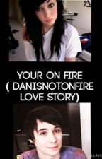 You're on Fire (Danisnotonfire Romance) by DarkSparkleX
