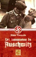 Los barracones de Auschwitz by Sylenslyth