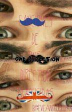 Canciones de One Direction traducidas by eveandlouis2428