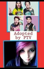 Adopted by PTV by ashleysandoval71465