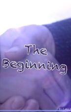 The Beginning |A Cube SMP Fanfic| •COMPLETED (and horrible)• by SamCJensen