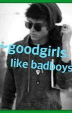~goodgirls like badboys ~ by kellinquinnishipu