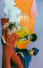 2537 ☯ muke ((traduccion)) by michaeltxps