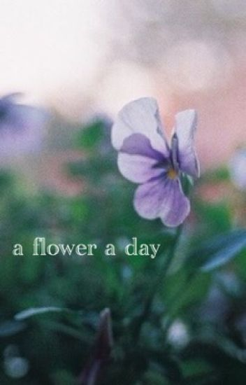 A Flower A Day    Malum