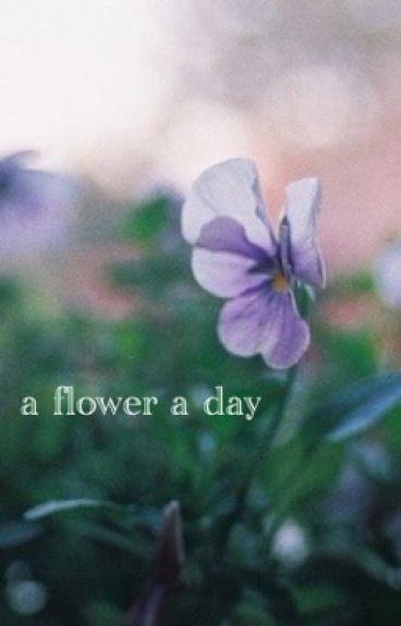 A Flower A Day || Malum
