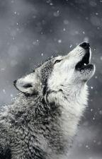 늑대와 인간의 사이를 수호하는 자. 가디언. [완결] by baaaam90