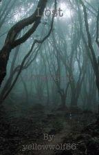 Lost(LOTR fanfic) by yellowwolf56